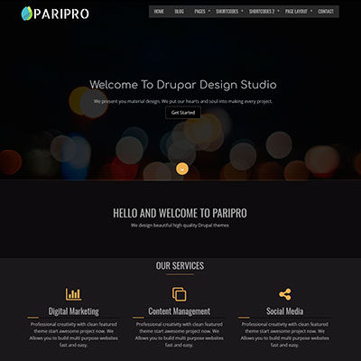 paripro theme